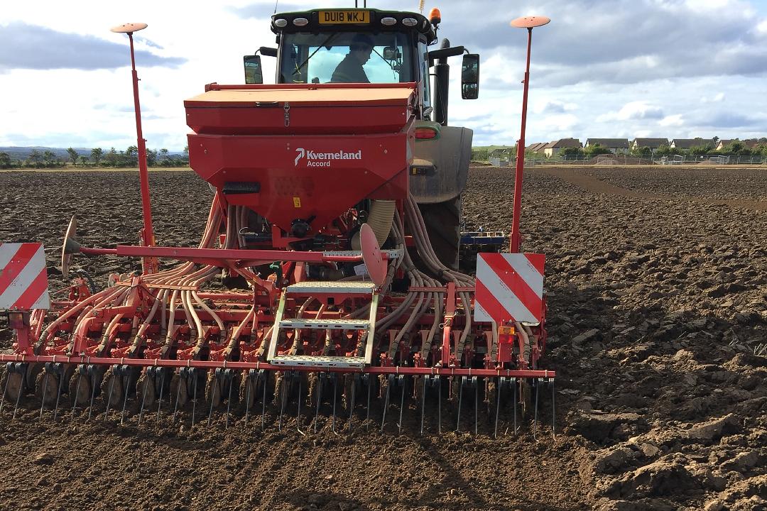 Drilling wheat-web720x1080U100