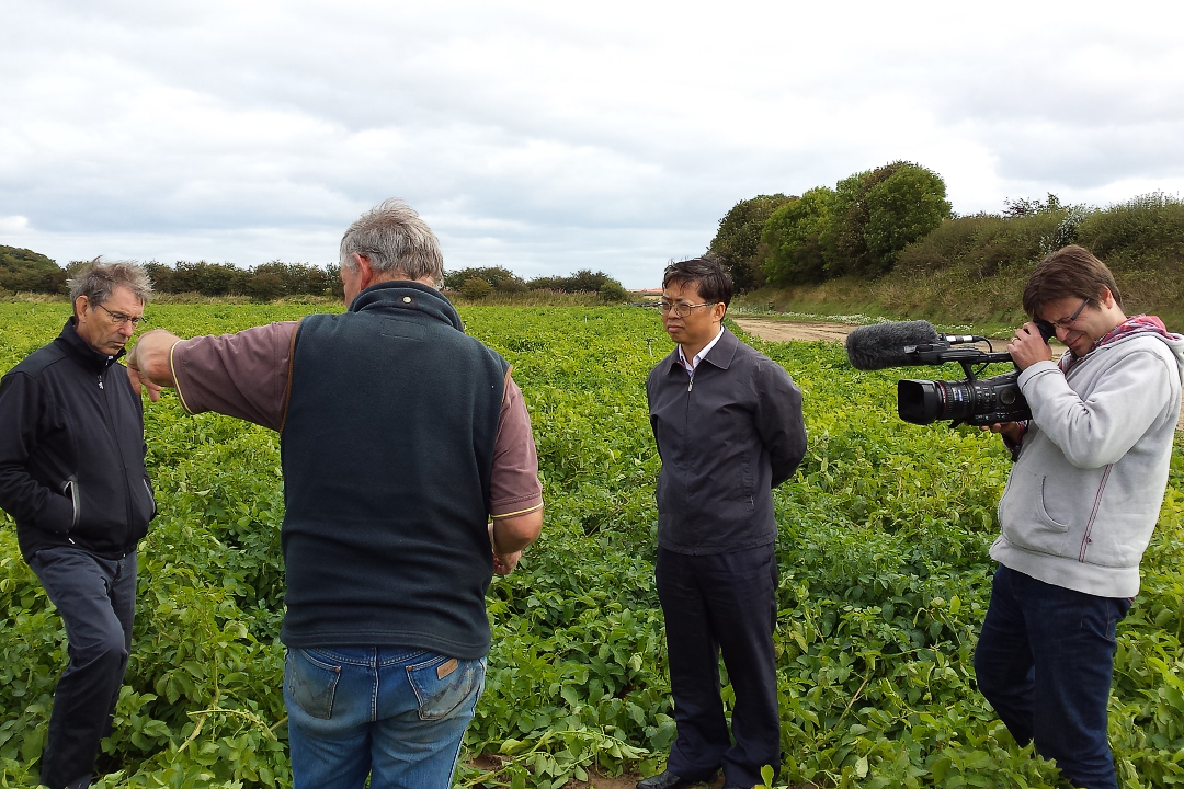 Filming How Scotland Works in tattie field with Dr Xu-web720x1080U100